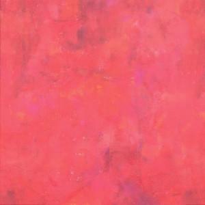 Alyse-Hart-Artist-Fuego